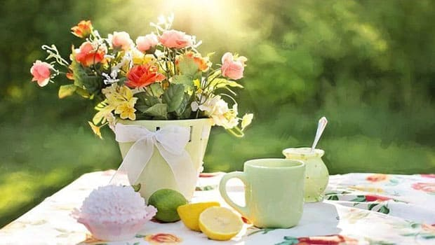 Decorated garden table in summer.