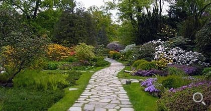 Paved polygonal slabs as a path through a garden.