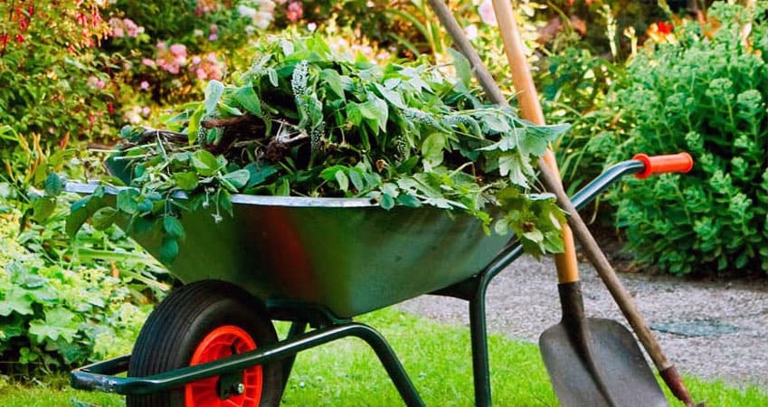 Wheelbarrow with garden shovel.