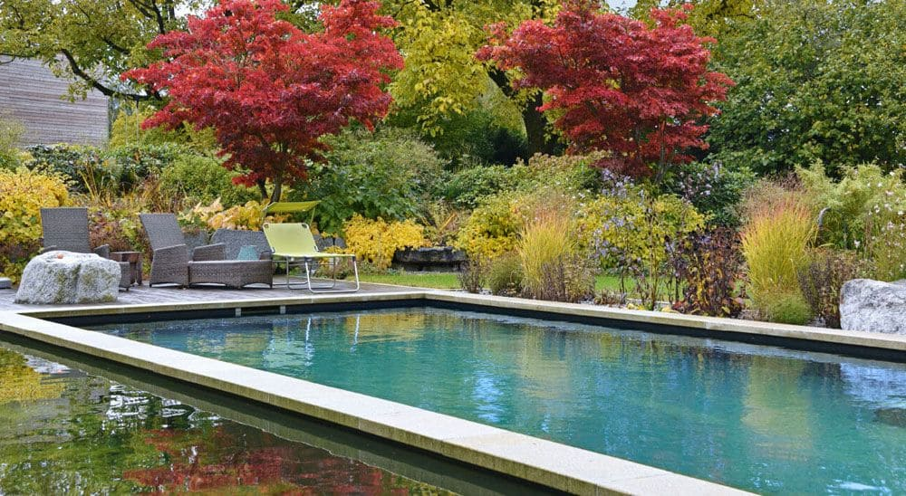 Modern swimming pond.